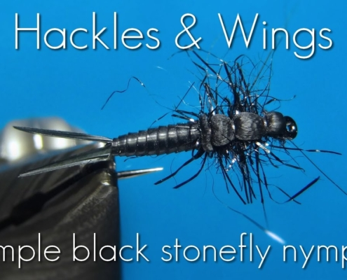 Fly-Tying-Simple-Black-Stonefly-Nymph-Hackles-Wings