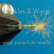 Fly-Tying-Small-Parachute-Mayfly-Hackles-Wings