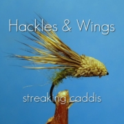 Fly-Tying-Streaking-Caddis-Hackles-Wings