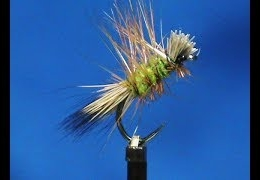 Fly-Tying-a-Caddis-Dyret-with-Jim-Misiura
