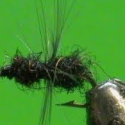 Fly-Tying-a-Fur-Ant-with-Jim-Misiura