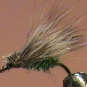 Fly-Tying-a-Green-Caddis-with-Jim-Misiura