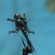 Fly-Tying-a-LivelyLegz-Black-Rabbit-with-Jim-Misiura