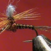 Fly-Tying-a-Loop-Wing-Mahogany-Parachute-with-Jim-Misiura