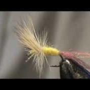 Fly-Tying-a-Sulphur-Cripple-with-Jim-Misiura