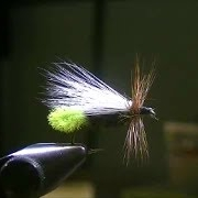 Fly-Tying-an-Ausable-QueenDry-Fly