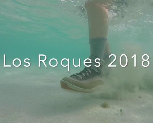 Flyfishing-Los-Roques-2018