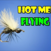 Flying-Black-Ant-by-Fly-Fish-Food