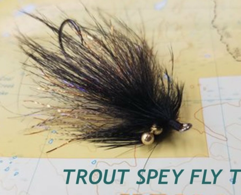 How-To-Tie-A-Deadly-Trout-Spey-Swinging-Fly-The-Black-Death