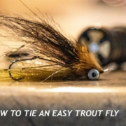 How-To-Tie-An-Easy-Trout-Spey-Fly-Easy-Skagit-Fly-Trout-Spey-Streamer