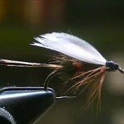 How-to-tie-a-Royal-Coachman-Wet-Fly