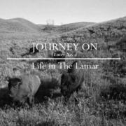 Life-in-The-Lamar