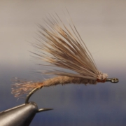 March-Brown-Emerger
