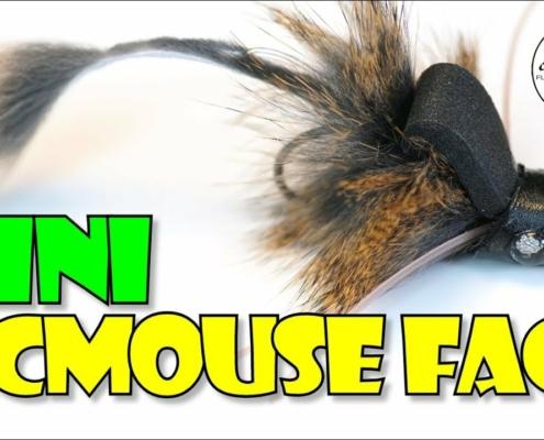 Mini-McMouse-Face