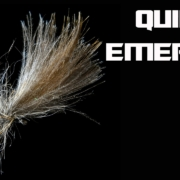 Quill-CDC-Emerger-Quill-is-Life-AndyPandy