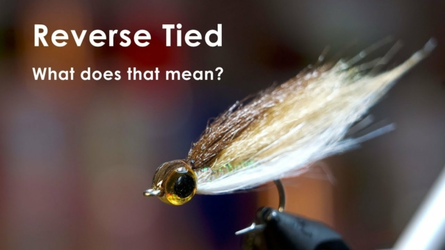 Reverse-Tied-Minnow-UNDERWATER-FOOTAGE-McFly-Angler-Fly-Tying-Tutorials