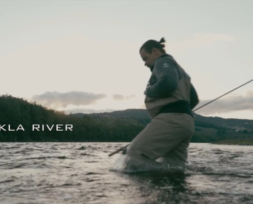 Salmon-A-short-fly-fishing-tale