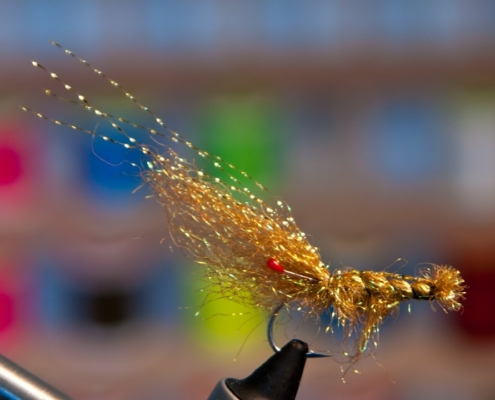 Starburst-Brown-Shrimp-How-to-tie-a-shrimp-fly