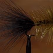 Steelhead-Woolly-Bugger
