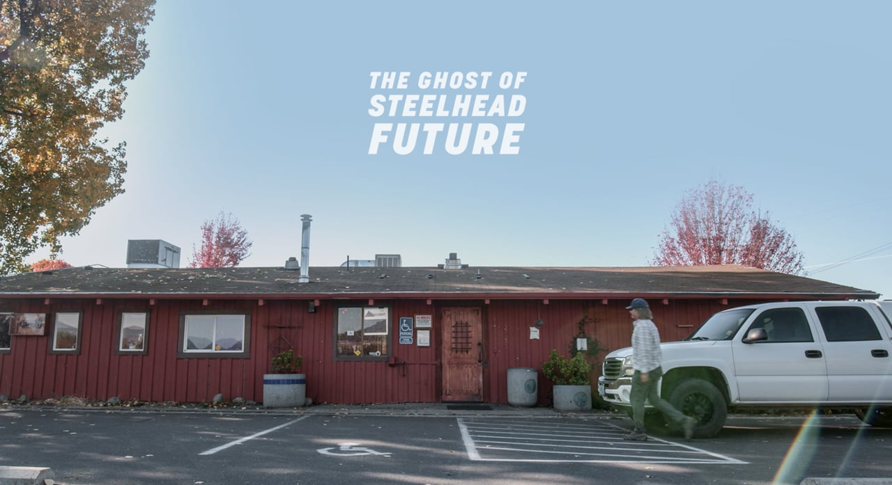 Swing-Season-Ghost-Of-Steelhead-Future