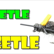 The-Leetle-Beetle-by-Fly-Fish-Food