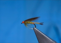 Tying-a-Golden-Olive-Wet-Fly-by-Davie-McPhail