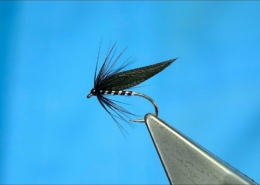 Tying-a-Magpie-Tail-Clyde-Style-Night-Wet-Fly-with-Davie-McPhail