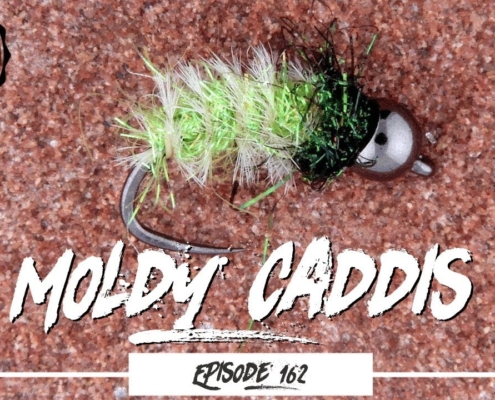 Tying-a-Moldy-Caddis-Pupa-Trout-Fly-Ep162-PF-piscatorFlies