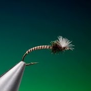 Tying-a-Moose-quill-midge-with-Barry-Ord-Clarke