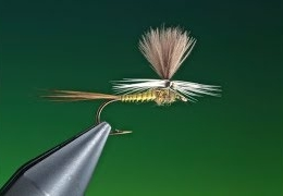 Tying-a-Parachute-Blue-winged-olive-with-Barry-Ord-Clarke