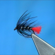 Tying-a-Peacock-Zulu-Wet-Fly-by-Davie-McPhail