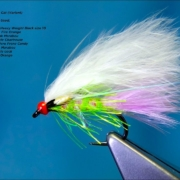 Tying-a-Pseudo-Hackle-Candy-Cat-Variant-by-Davie-McPhail