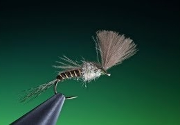 Tying-a-large-dark-olive-emerger-with-Barry-Ord-Clarke