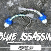 Tying-the-Blue-Assassin-Trout-Fly-Pattern-Ep165-PF-PiscatorFlies