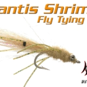 Veverkas-Mantis-Shrimp-Fly-Tying-Video-Instructions