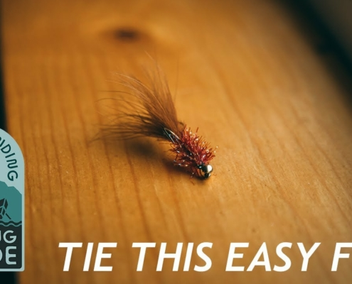 Woolly-Bugger-Fly-Tying-Instructions-Tie-an-Easy-Woolly-Bugger-aka-Krystal-Bugger