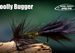 Woolly-Bugger-classic-trout-fly-tying