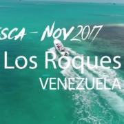 fishing-Los-Roques-Venezuela-Bonefish-Tarpon-ago-2017