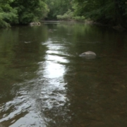 2-minute-float