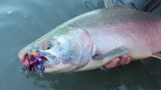 Alaska-Fly-Fishing-Silver-Means-Gold
