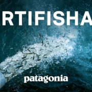 Artifishal-The-Fight-to-Save-Wild-Salmon