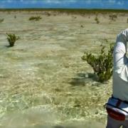 Bahamas-Flats-Fishing-The-Walking-Man-by-Todd-Moen