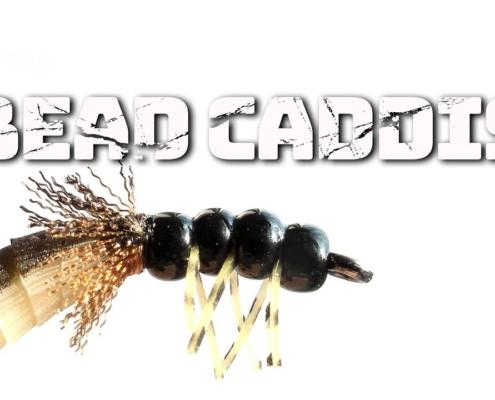 Bead-Caddis