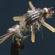 Beginner-Fly-Tying-a-Bead-Head-Rubber-Legs-Hares-Ear-with-Jim-Misiura