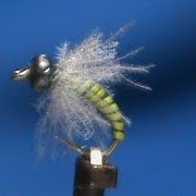 Beginner-Fly-Tying-a-Beadhead-CDC-Caddis-Larva-with-Jim-Misiura