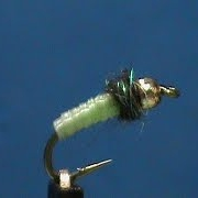 Beginner-Fly-Tying-a-Beadhead-Caddis-Larva-with-Jim-Misiura