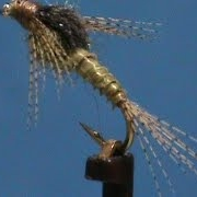 Beginner-Fly-Tying-a-Beatis-Nymph-with-Jim-Misiura