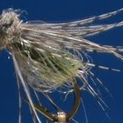 Beginner-Fly-Tying-a-LaFontaine-Sparkle-Pupa-with-Jim-Misiura
