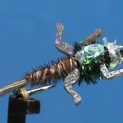 Beginner-Fly-Tying-a-Lively-Legz-Flashback-Pheasant-Tail-with-Jim-Misiura