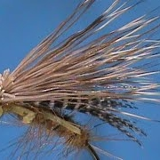Beginner-Fly-Tying-a-Lively-Legz-Golden-Stone-with-Jim-Misiura